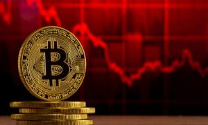 Bitcoin y Elon Musk